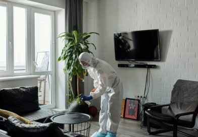 Employing Cleaning Experts For A Neater, More Organized Home Environment