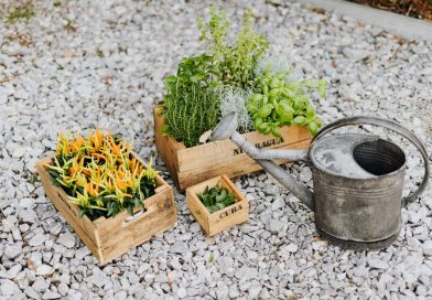 A Must-Read Guide on the Various Most Crucial Gardening Tools You Should Have